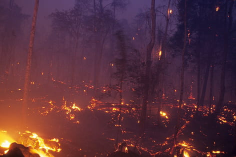Drought, deforestation link fuels climate change