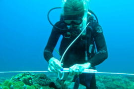 UCI introduces ocean research and education initiative