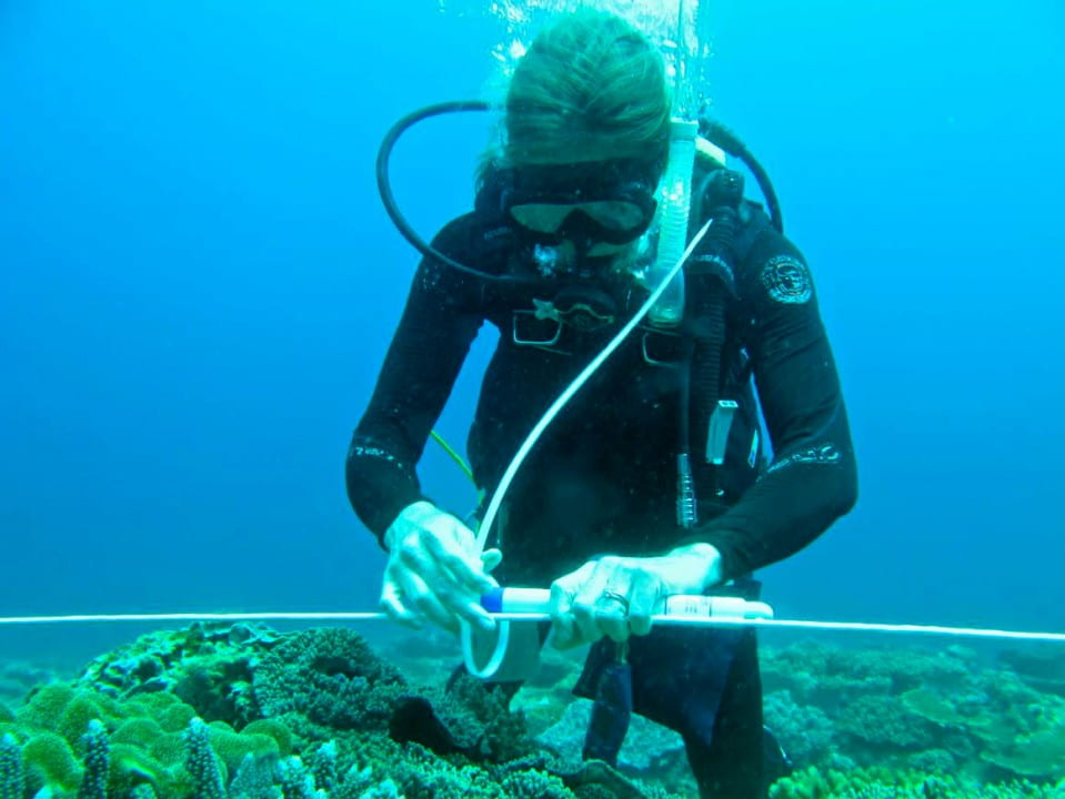 Kristen Davis, assistant professor of civil & environmental engineering. secures instruments to a coral reef in the South China Sea. Courtesy of T. DeCarlo