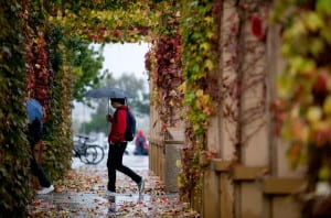 With climatologists uncertain how powerful the impending El Nino will be, California residents need to be prepared for anything from light showers - which this UCI student takes in stride - to serious deluges. Steve Zylius / UCI