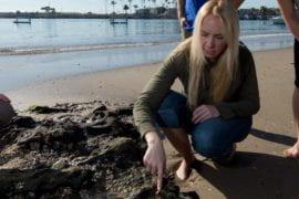 Katherine Mackey named Sloan Research Fellow
