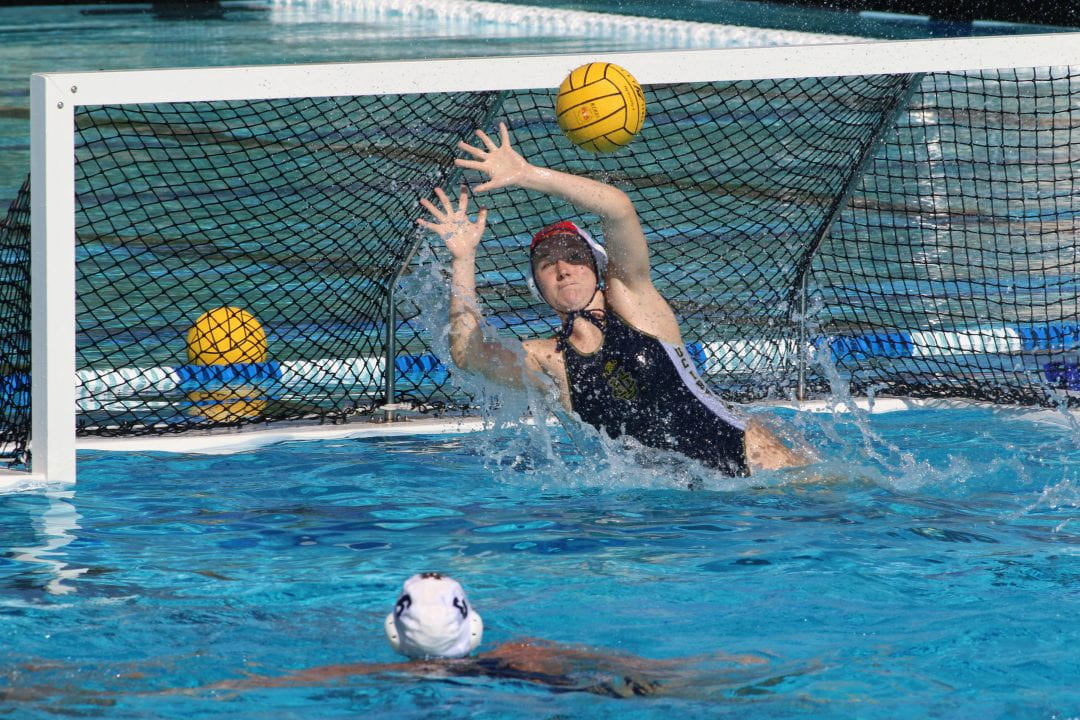 A UCI poll found that water polo goalies experienced more concussions than other players, especially during practice sessions.  Glenn Feingerts / UCI Athletics