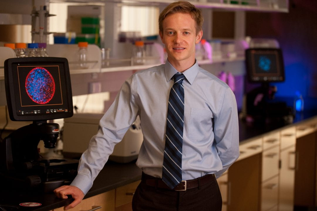 Developmental biologist Maksim Plikus studies how stem cells can be reprogrammed to heal wounds and avoid skin scarring. Daniel A. Anderson / UCI