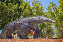 UCI and Los Angeles Rams bring professional football back to Orange County