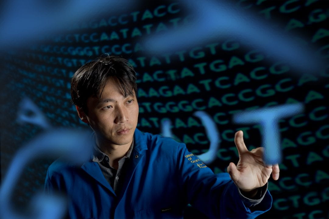 """""""A lot of our projects are figuring out how to experiment on cells at rates necessary to see evolution occur in the time scales of a laboratory rather than in the natural biological world,"""" says Chang Liu, UCI assistant professor of biomedical engineering.  Steve Zylius / UCI"""