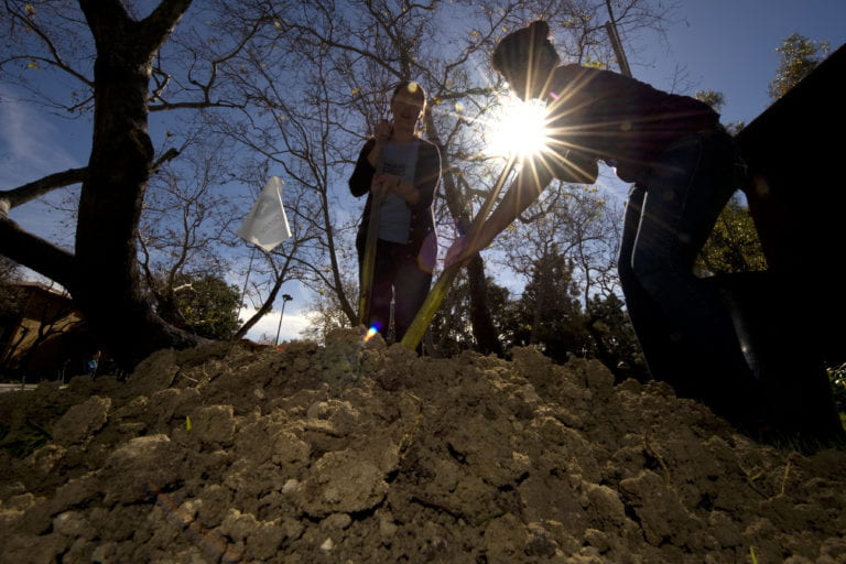 Soil will absorb less atmospheric carbon than expected this century, UCI-led study finds
