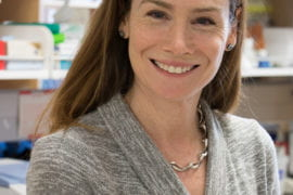 3 UCI biologists are elected by the Ecological Society of America as 2017 fellows