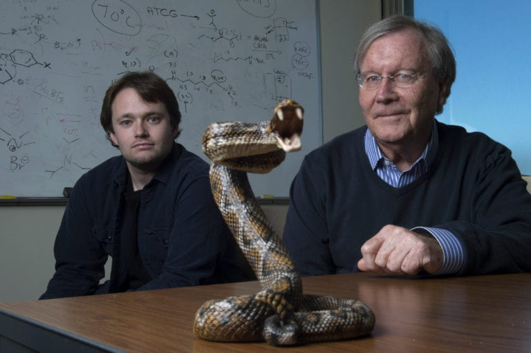 Snake bit? UCI chemists figure out how to easily and cheaply halt venom's spread