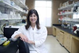 Basis of 'leaky' brain blood vessels in Huntington's disease identified