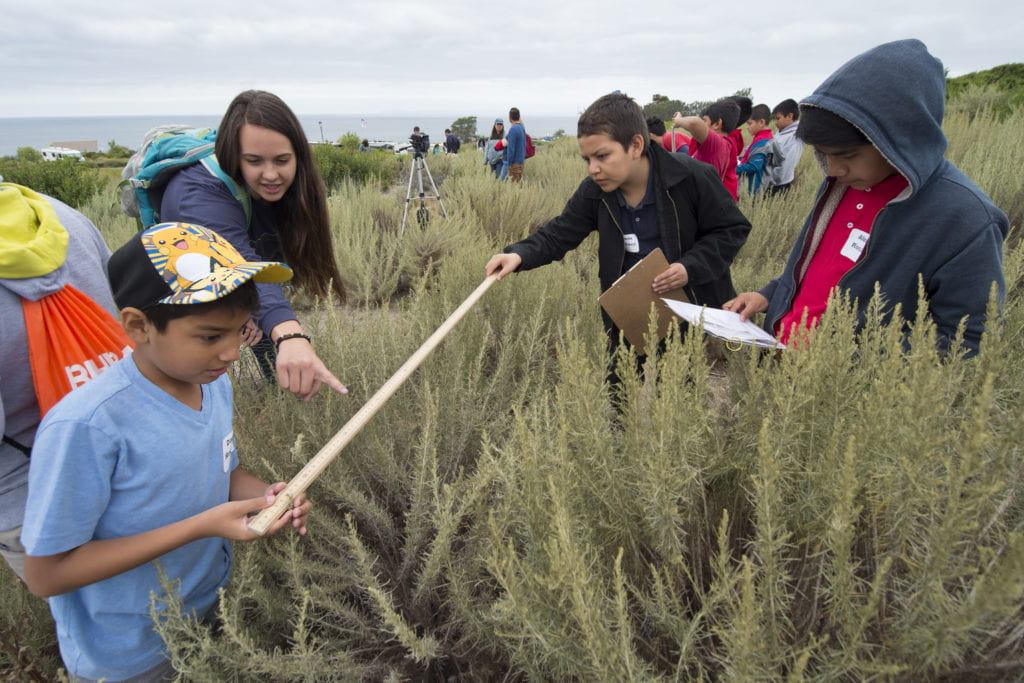 Cultivating the next generation of scientists