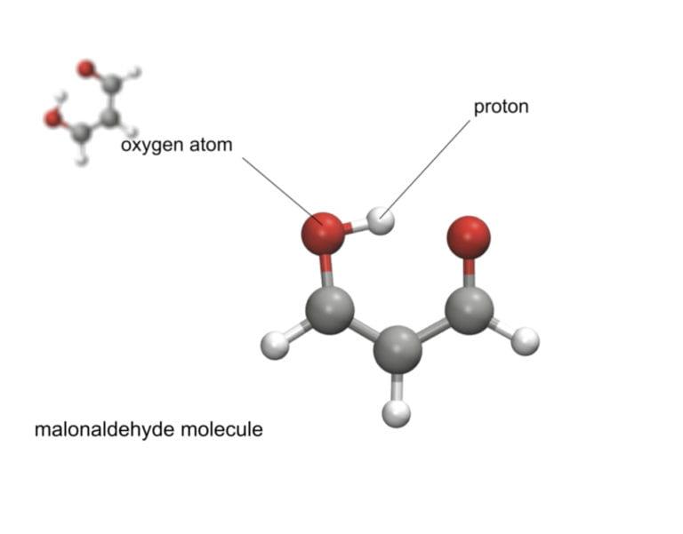 UCI chemist helps create tool that anticipates molecular actions