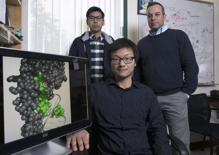 UCI scientists develop new chemical tool to study RNA structures inside cells