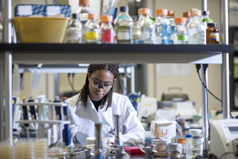 Ph.D. 'pipeline' promotes diversity