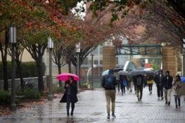 Less predictable precipitation