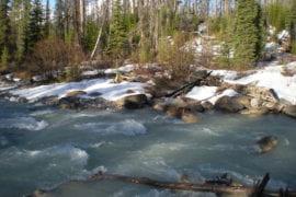 UCI study: Reduced Sierra Nevada snowmelt runoff to threaten California agriculture