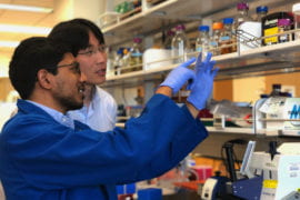 UCI scientists simplify and accelerate directed evolution bioengineering method