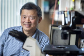 Biomedical engineering professor is named fellow of the National Academy of Inventors