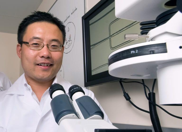 Nanotechnology treatment shows promise against multiple sclerosis