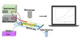 Researchers develop 'lab on a chip' for personalized drug efficacy monitoring
