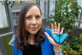 UCI butterfly expert's advocacy for Hispanic scientists takes wing with award