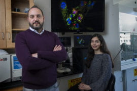 UCI team demonstrates ability to supercharge cells with mitochondrial transplantation