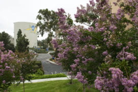 UCI is No. 1 in Sierra magazine's 2020 'Cool Schools' ranking of sustainability leaders