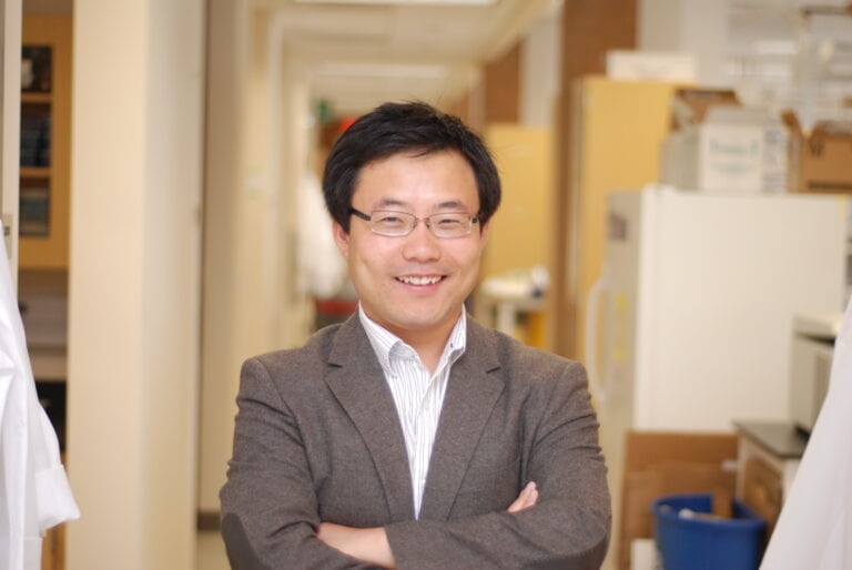 UCI commentary expands understanding of how transplanted stem cells address disease