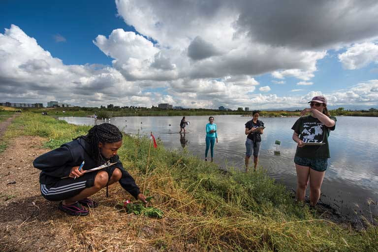 Over the years, the San Joaquin Marsh Reserve has provided many UCI students the opportunity for hands-on ecological research.
