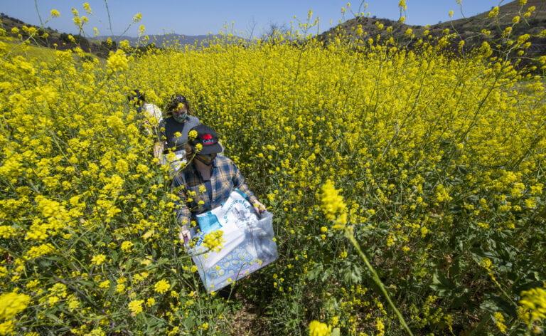 Fieldwork for a better future