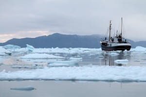 The MV Cape Race glides through the icy waters of the Western Greenland coast. Maria Stenzel / for UC Irvine