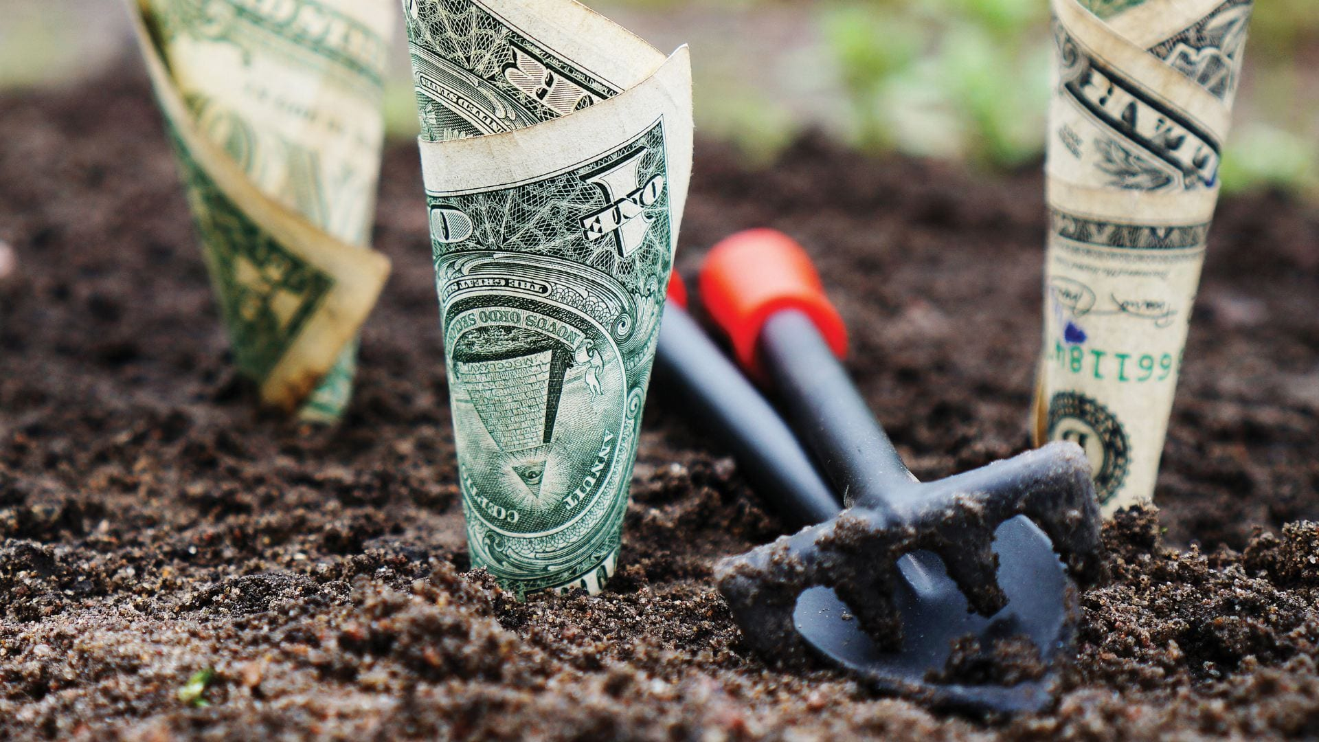 Dollar bills stuck in the ground, as if they are growing from the ground, next to a trowel