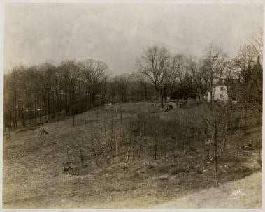 Farmland that would become The Glen. The Allen Cottage stands in the top left of the photo.