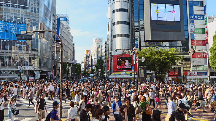 A Seemingly Developed Nation: Women's Rights in Japan