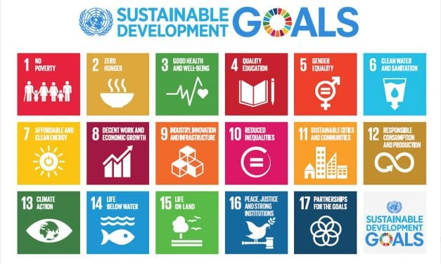 Checking In: Reviewing Progress in UNDP's Development Goals