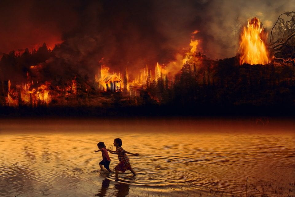 Why Would Bolsonaro Reject Aid in Combatting the Amazon Wildfires?