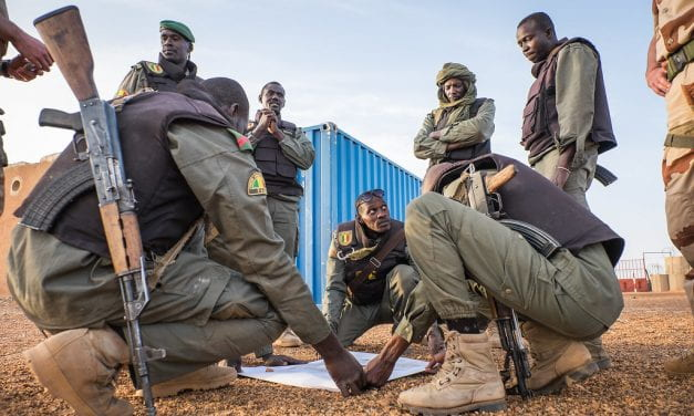 Evaluating Counterterrorist Efforts in Africa's Sahel Region