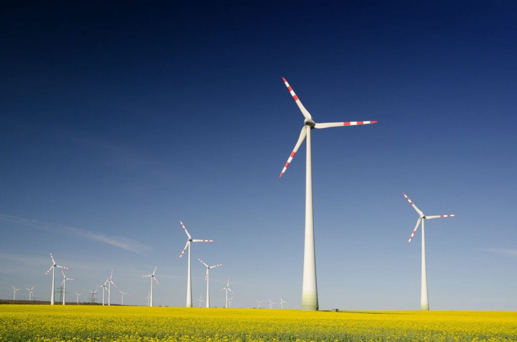 Windmills on grass