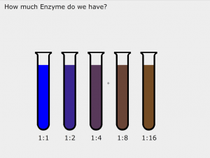 A series of test tubes