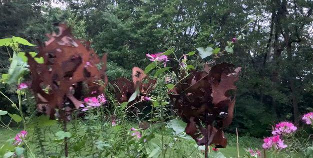 Elizabeth Long Lingo – My garden withstands the storms