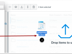 Pro Tip Tuesday: Drag and Drop to upload files to Canvas