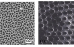 Featured works: Exposure of Carbon Nanotubes Fabricated by Template-Assisted CVD through a Two-Step Method