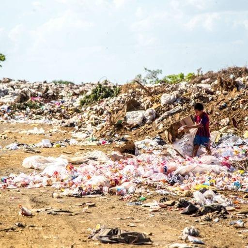 Global Environmental Histories