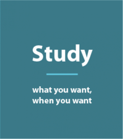Study what you want, when you want