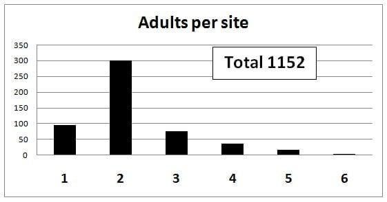 Graph 4