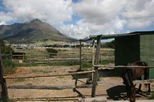 Oude Molen Eco Village Stable