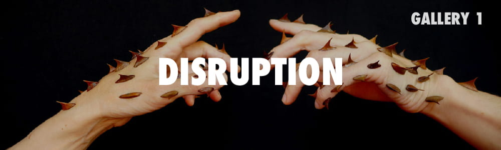 Click here to enter the Disruption Gallery.