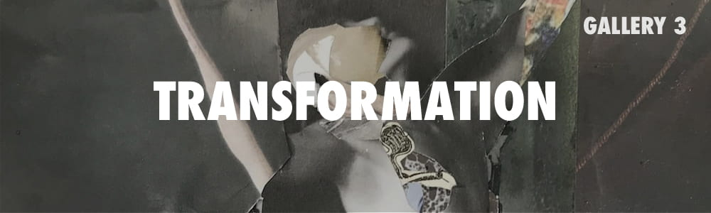 Click here to enter the Transformation Gallery.