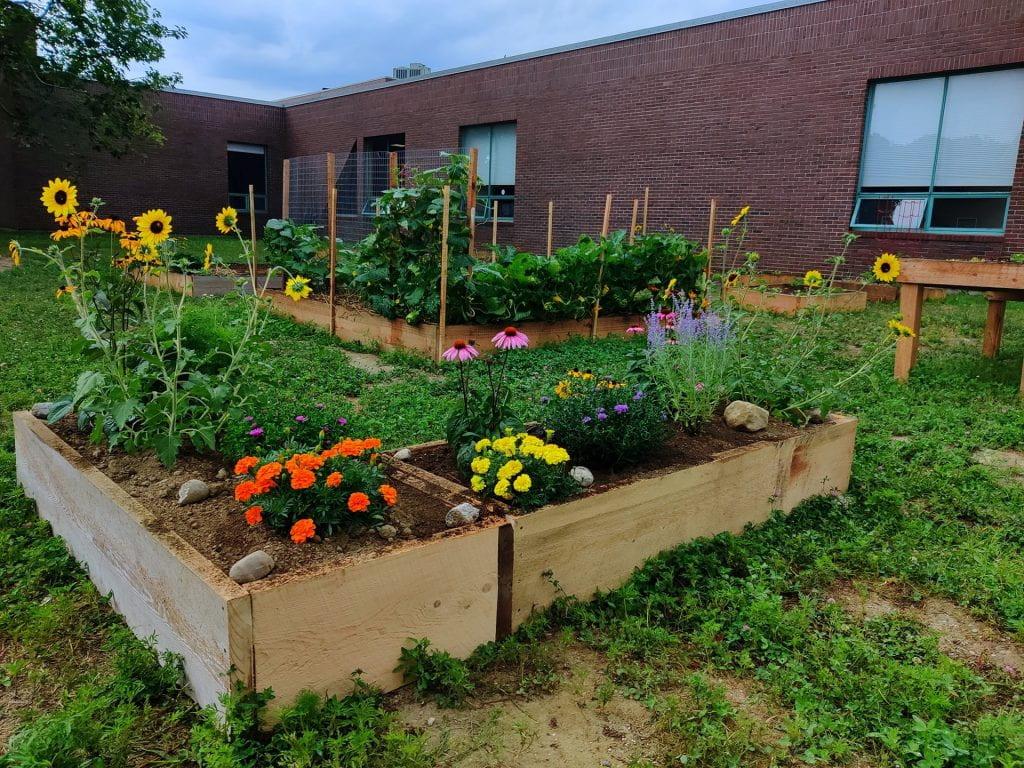 UMF Community Garden