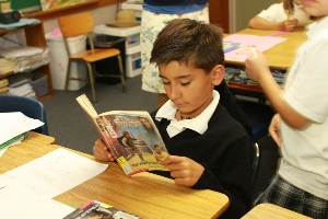 Accelerated reader picture2