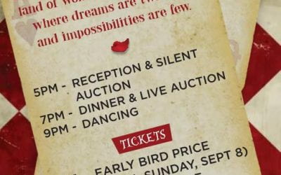 ABVM Auction Gala – October 5th, 2019